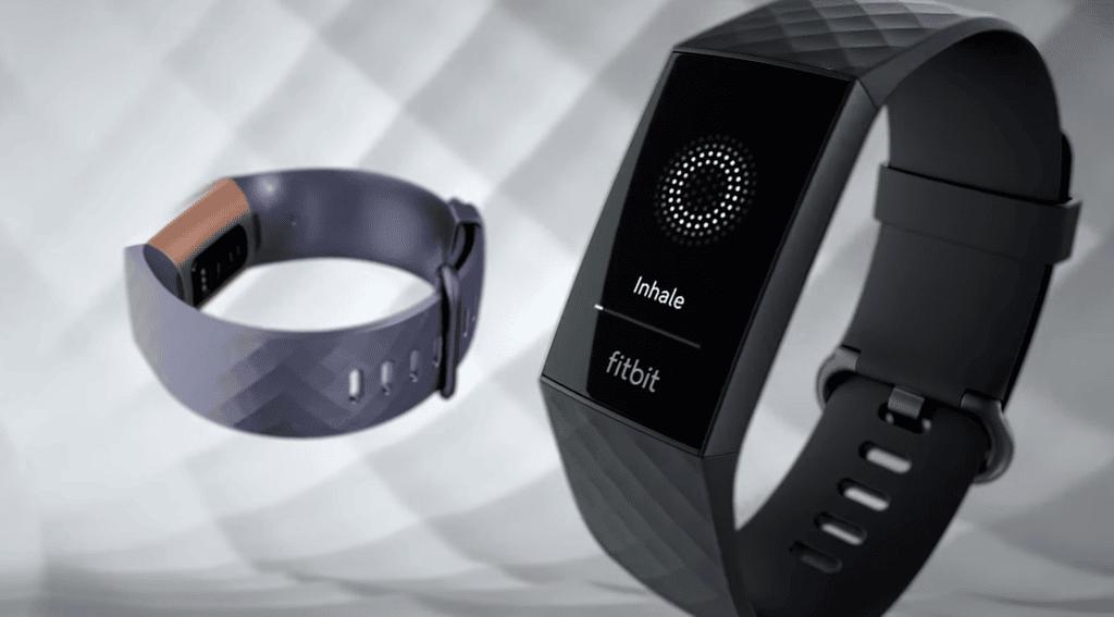 Fitbit - Blog SFAM