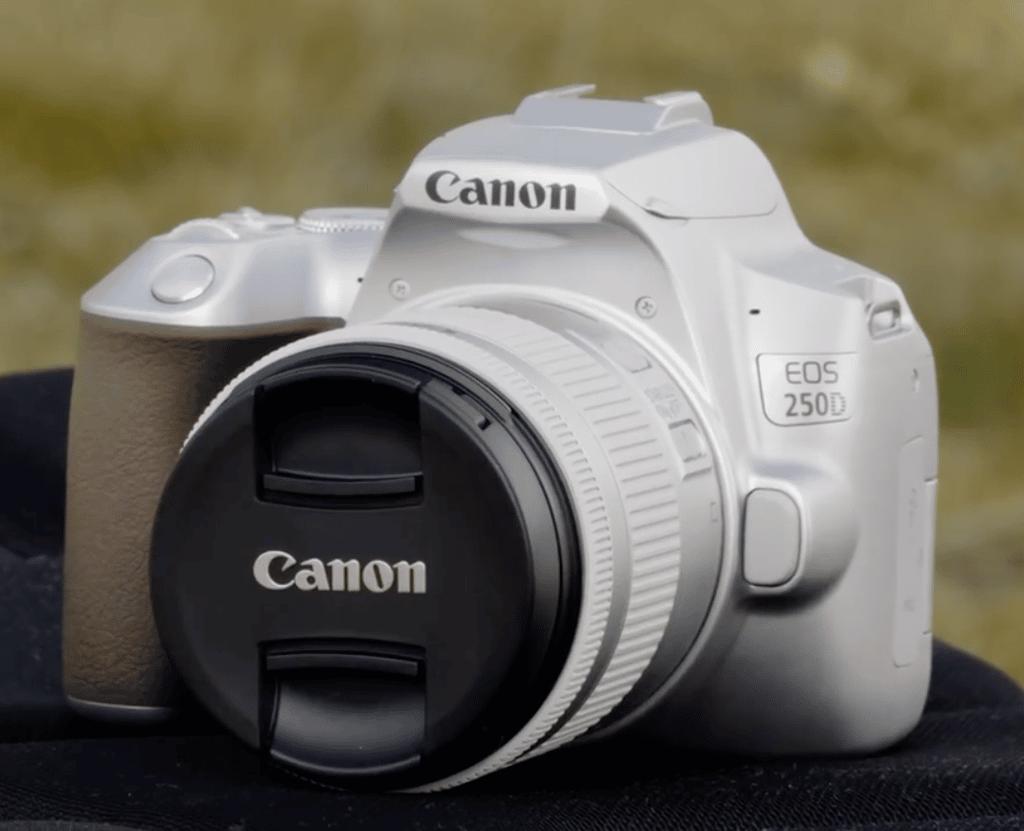 canon 250D - Blog SFAM
