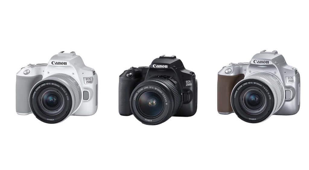 canon EOS 250D reflex ultra leger 4k - Blog SFAM