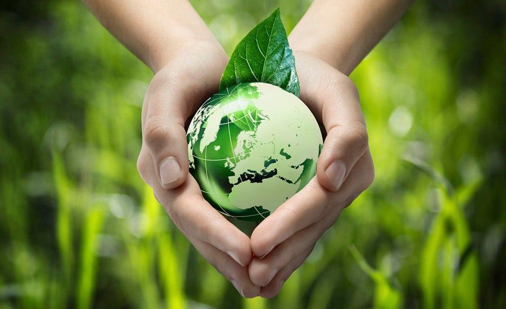 developpement durable marques engagent - Blog SFAM