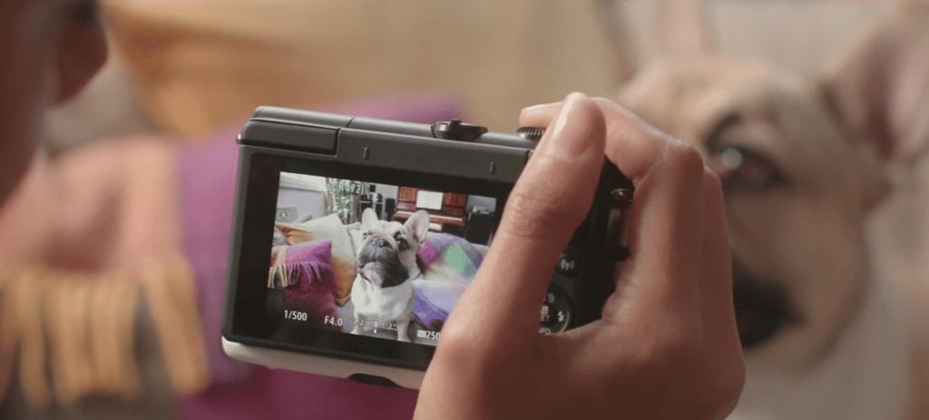 Hybride Appareil Canon EOS M100 - Blog SFAM