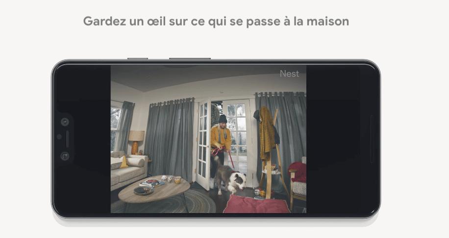 Nest Cam intégrée - Blog SFAM