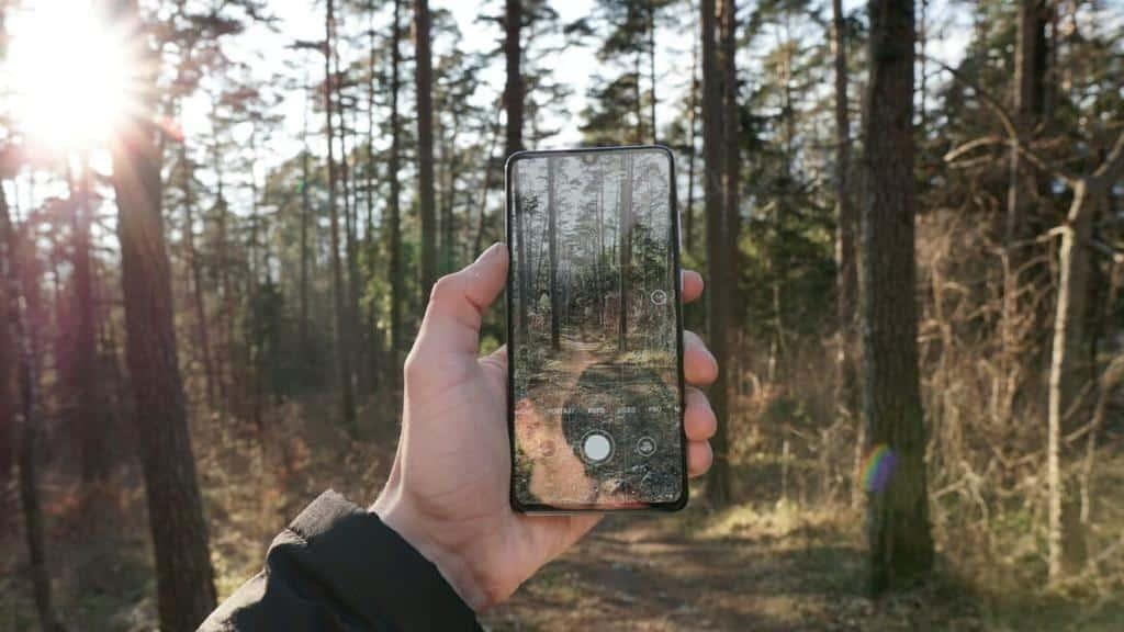 Eco Rating móviles - Celside Magazine